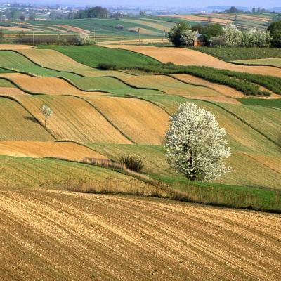 Paysages de Loire Atlantique